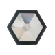 Prožektorius-G  RGB IP66